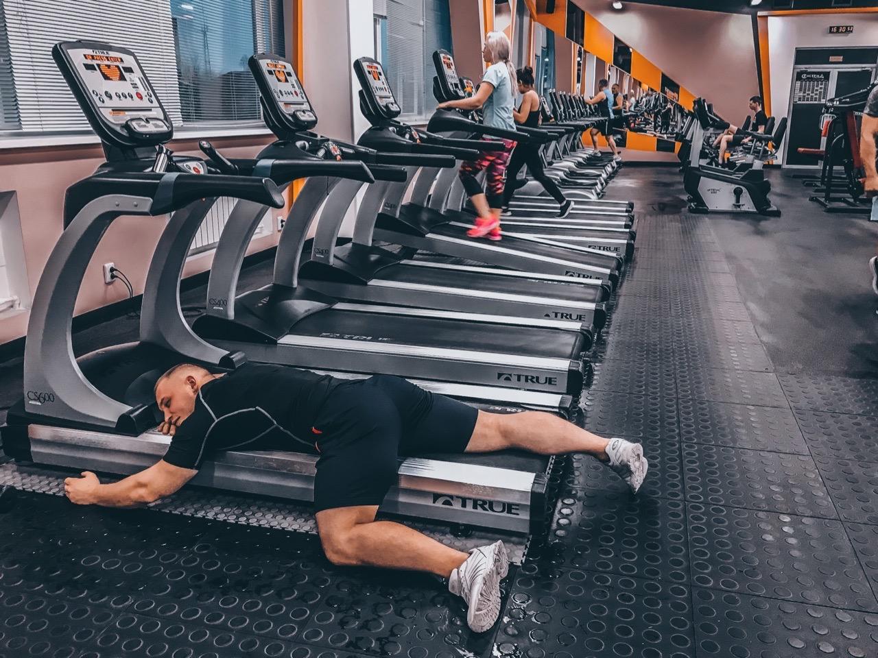 Можно ли качать каждый день одни и те же мышцы?